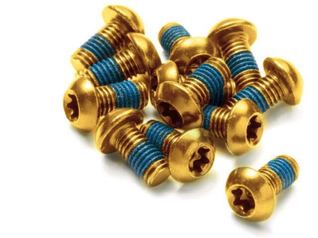 Reverse Disc Rotor Bolt Set 12 Pieces, gold